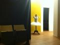 studiorundgang